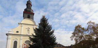 Der Aufbau zum Frankenthaler Weihnachtsmarkt 2017 beginnt auf dem Rathausplatz mit dem Aufstellen des Weihnachtsbaums. (Foto: Stadt Frankenthal)
