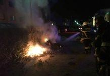 Die Hecke wurde abgelöscht (Foto: Feuerwehr Bad Kreuznach)
