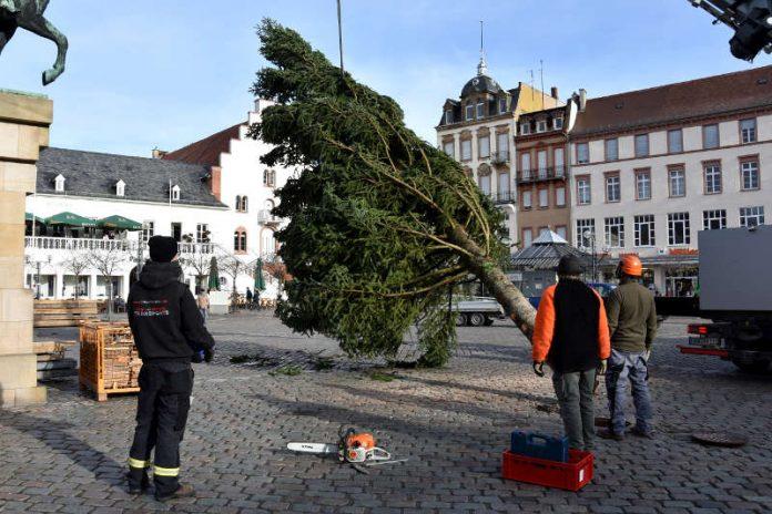 Auf dem Landauer Rathausplatz hat heute der Aufbau des Kunsthandwerklichen Thomas Nast Nikolausmarkts begonnen. (Foto: Stadt Landau in der Pfalz)