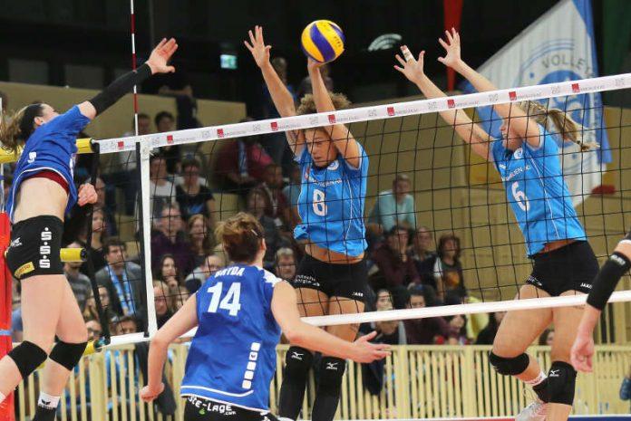 Endlich wieder ein VCW-Heimspiel: Jahresauftakt in der Sporthalle am Platz der Deutschen Einheit (Foto: Detlef Gottwald)