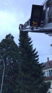 Einsatz wegen einem Baum - Foto: Feuerwehr Speyer