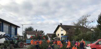 Christbaumsammelaktion im Ortsteil Sulzbach (Foto: Feuerwehr Weinheim)