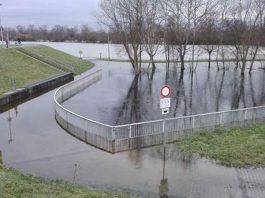 Land unter am Rhein bei Ginsheim (Foto: Regierungspräsidium Darmstadt)