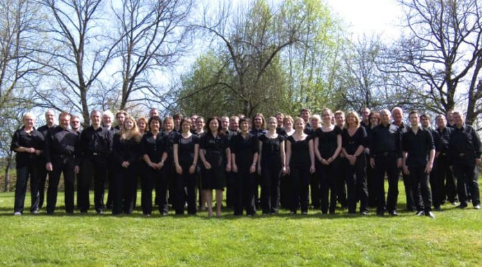 Blasorchester des Landkreises (Foto: Kreisverwaltung Südwestpfalz)