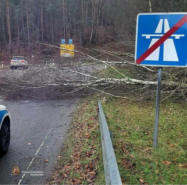 Umgestürzter Baum in der Autobahnausfahrt