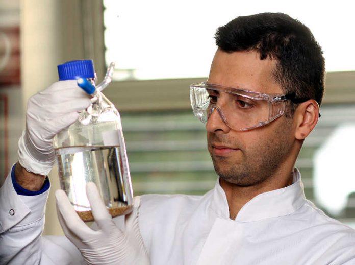 Majid Vafaeezadeh