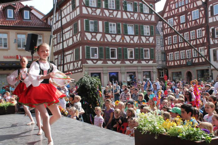 Sommertag (Foto: Stadt Mosbach)
