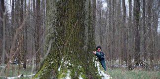 Forstamtsleiter Ulrich Kienzler liebt seinen Wald und demonstriert hier die Größenverhältnisse (Foto: Klaus Eppele)