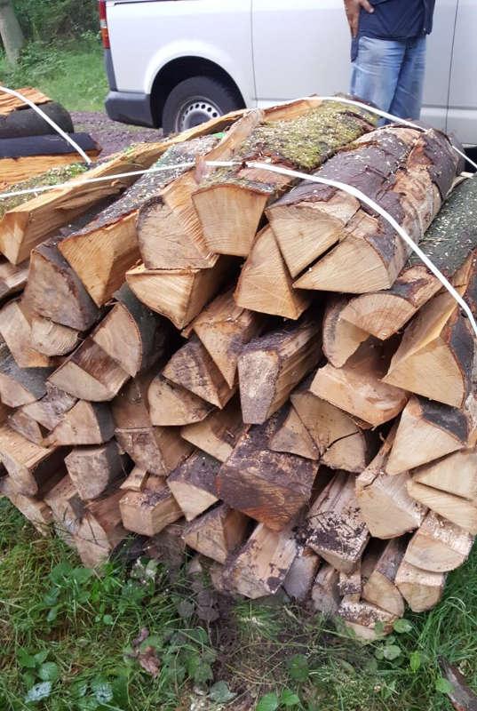 Bild eines Holzbündels, in denen der Forstzweckverband entsprechende Geräte angebracht hat. (Foto: Gemeindeverwaltung Haßloch)