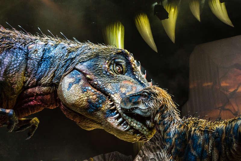 DINOSAURIER – IM REICH DER GIGANTEN LIVE! (Foto: Patrick Murphy)