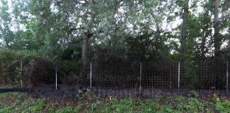 Brand an einem Zaun in Ludwigshafen