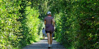 Run Up (Foto: Ludwigshafener Lauf-Club e.V.)