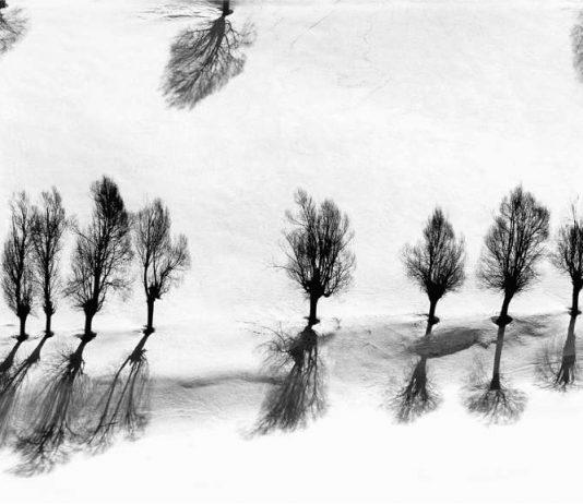 """Still und bewegt: Abbas Kiarostamis Fotografie ohne Titel aus der Serie """"Snow White"""", die zwischen 1978 und 2004 entstand (Foto: Privatsammlung, Courtesy Stiftung Situation Kunst, Bochum © Nachlass Kiarostami)"""