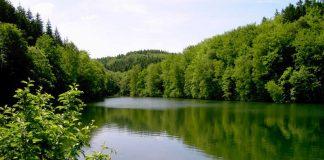 Reinheit der Gewässer: ein Wunschtraum? (Foto: Bezirksverband Pfalz)