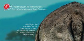 """Das Poster zur Ausstellung """"Alles Scheiße"""" (Quelle: Pfalzmuseum für Naturkunde)"""