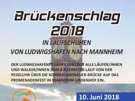 lauf mannheim 2018