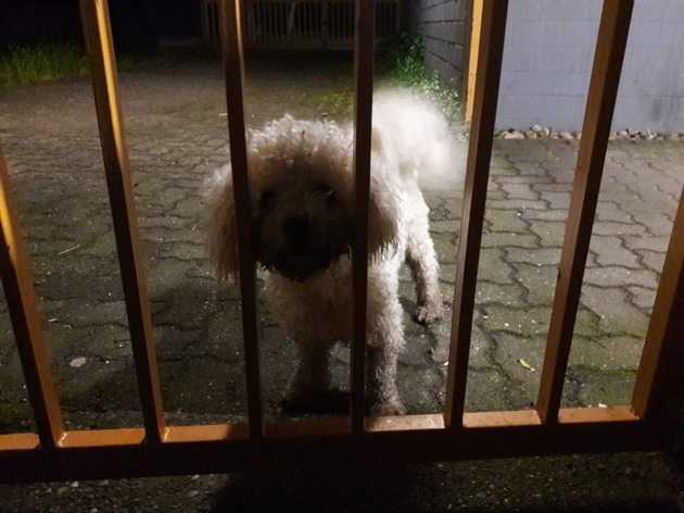 Ein Täter hinter Gittern