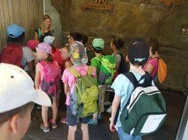 Die Schulklasse vor dem Affenhaus (Foto: Holger Knecht)