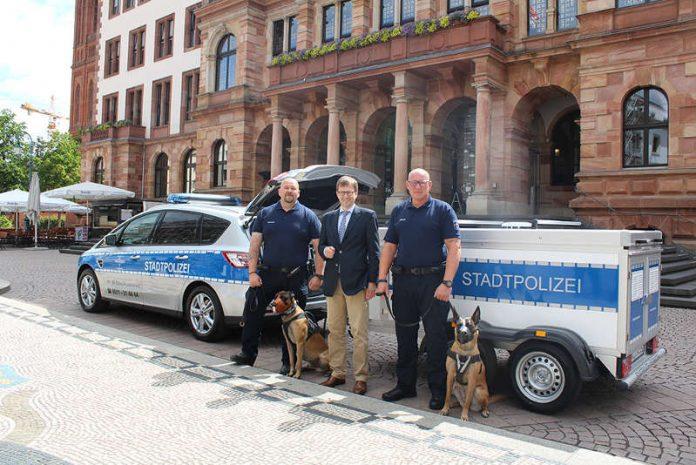 Mirco Schornstein mit Don, Dr. Oliver Franz, Mathias Bartels mit Xtra (Foto: Landeshauptstadt Wiesbaden)