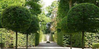 Boskett im Schlossgarten Schwetzingen (Foto: Henrike von Werder-Zyprian/SSG-Pressebild)