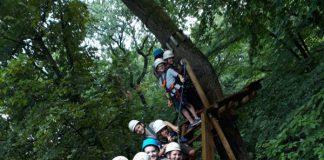 Hoch hinaus im Fun Forest Abenteuerpark in Kandel (Foto: Verbandsgemeinde Landau-Land)