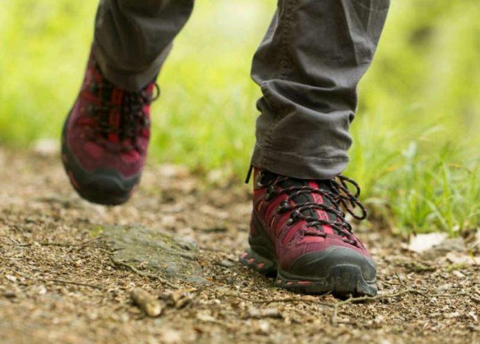 Wandern (Foto: Fieber)