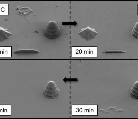 Dreidimensionale Mikrostrukturen aus verschiedenen spaltbaren Fotolacken. Die Rasterelektronenmikroskopaufnahmen zeigen den selektiven Abbau der Strukturen. (Skalierung 20 µm) (Abb.: Nature Communications)