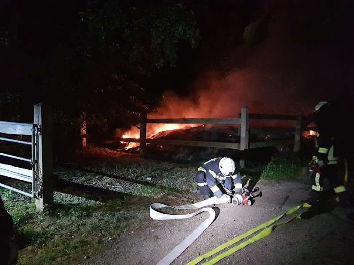 Auf einer Pferdekoppel brannte es (Foto: Feuerwehr Haßloch)