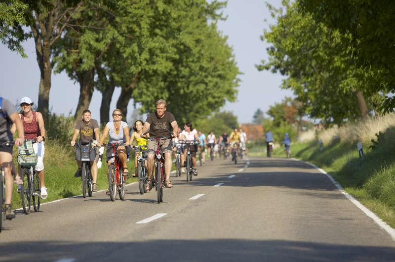Freizeit, Erlebnis und Sport in Weinregionen (Foto: DWI)