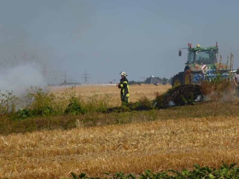 Eine Ackerfläche stand in Flammen (Foto: M. Pessara / BF Mainz)
