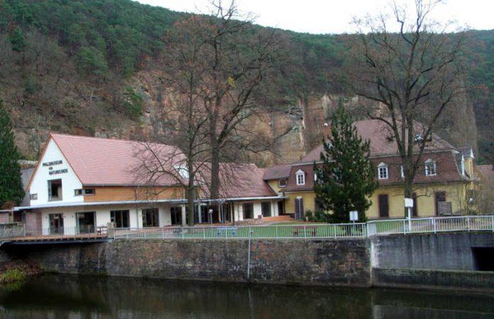 Pfalzmuseum Bad Dürkheim