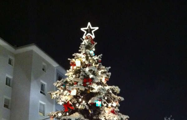Weihnachtsbaum (Foto: LUKOM)