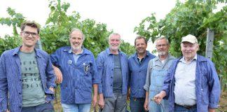 Martin Braun vom Weingut Braun, Edgar Römelt, Jochen Gleich, Werner Schmid, Rainer Zepke und Walter Weinert (Leisböhler WeinKultur Haßloch e.V.) (Foto: Jürgen Vogt)