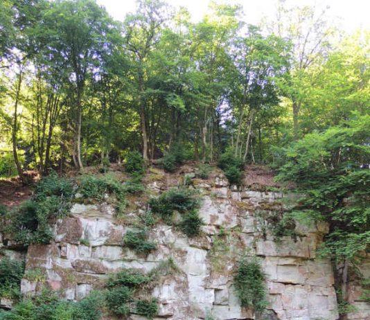 Sandsteinbruch (Foto: Stadt Eberbach Kultur-Tourismus-Stadtinformation)