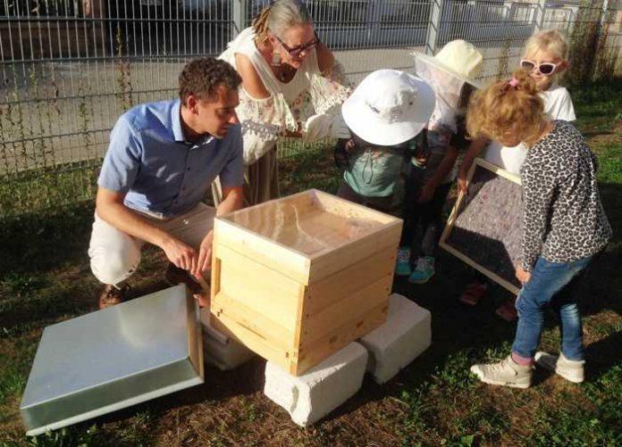 Bienenprojekt Kita Klaster - Quelle: Stadt Bad Kreuznach