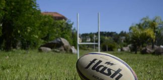 Symbolbild Rugby (Foto: Pixabay)