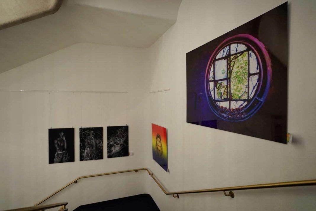 Neustadt Kunstausstellung 2019 (Foto: Holger Knecht)