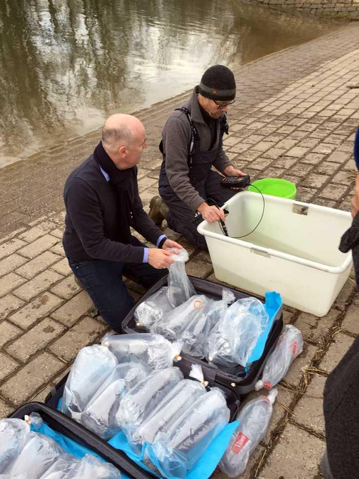 Vorbereitung für die Besetzung der Glasaale Bildnachweis: Regierungspräsidium Karlsruhe
