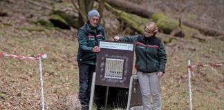 Forstamtsleiterin Frau Dr. Ute Fenkner-Gies entlässt zusammen mit Projektmitarbeiter Michael Back Luchsin Gaupa in ihre neue Heimat. (Foto: SNU RLP / Annina Prüssing)