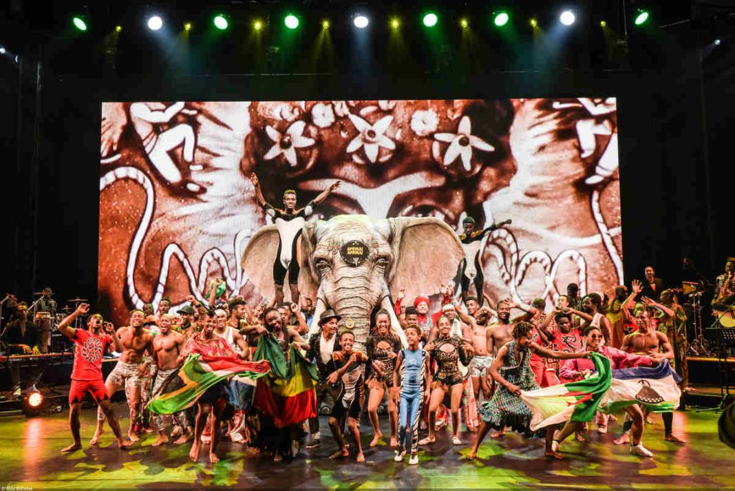 AFRIKA!AFRIKA! Finale (Foto: Nilz Boehme)