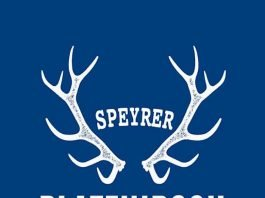 Speyrer Platzhirsch (Quelle: Stadt Speyer)#