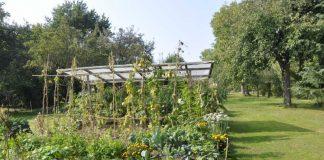 Einer der TeilnehmerInnen am Garten-Wettbewerb 2017: Garten der Familie Keller in Wissembourg (Foto: Bezirksverband Pfalz)