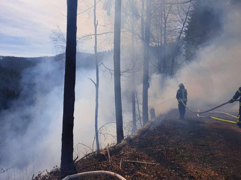 Waldbrand bei Helmbach (Foto: Presseteam der Feuerwehr VG Lambrecht)