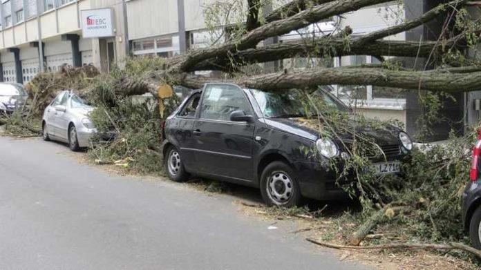 Symbolbild, Sturm, Autoschaden durch Baum © thommas68 on Pixabay