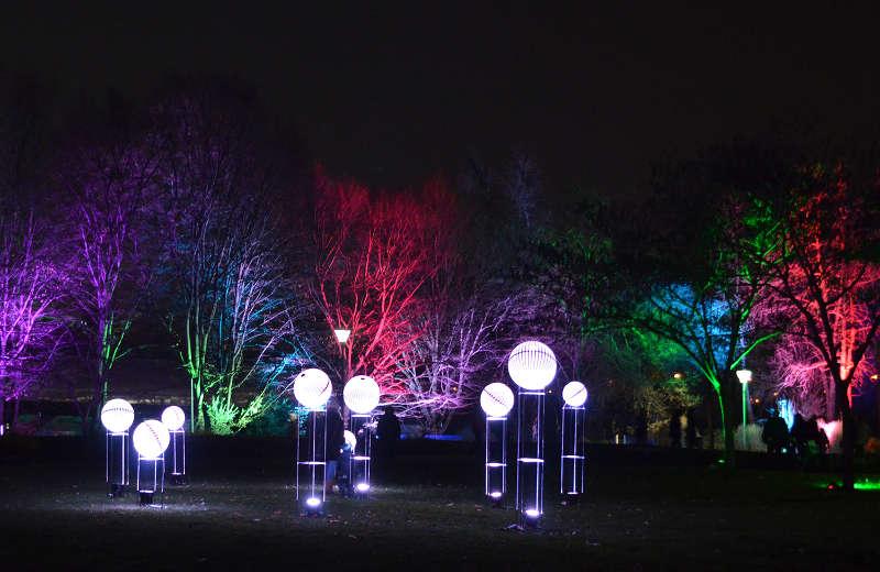 Winterlichter (Foto: Stadtpark Mannheim gGmbH)
