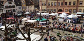 Der Marktplatz in Neustadt an der Weinstraße (Foto: WEG Neustadt)
