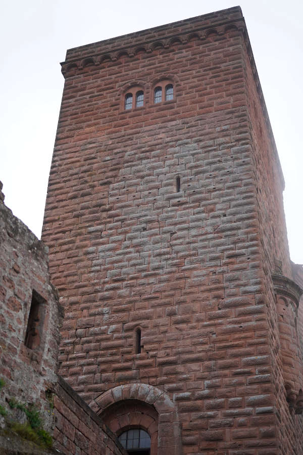 Annweiler Trifels Reichsburg (Foto: Holger Knecht)