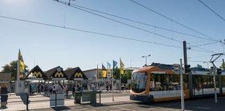 Mit den VRN zum Mannheimer Maimarkt (Foto: VRN/Michael Wolf)