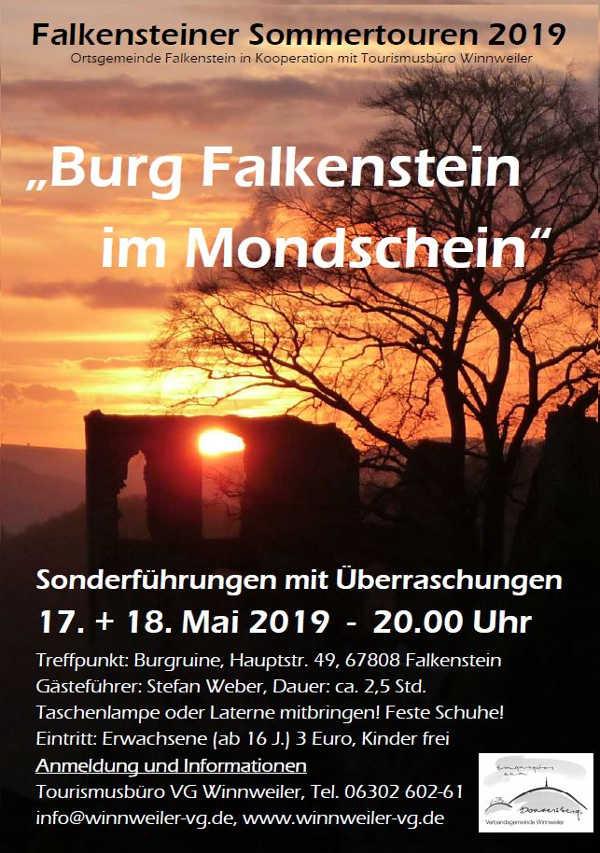 Burg Falkenstein im Mondschein