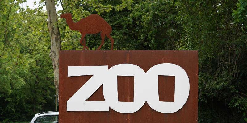 Landau Zoo (Foto: Holger Knecht)